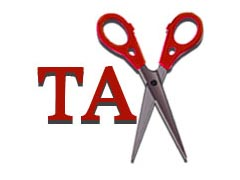Company taxation can be cut